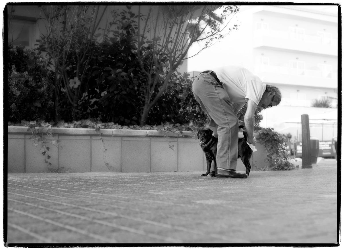 Mann Herrchen putzt Hund den Hintern ab - Mensch und Hund Tierliebe