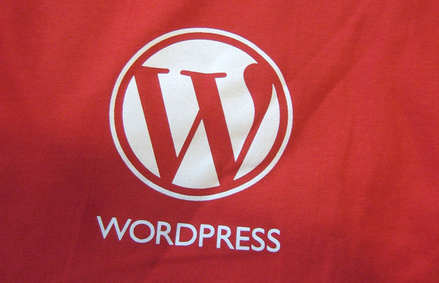 Wordpress Shirt