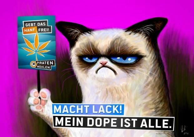 Grumpy Cat Plakat der Piraten Partei - Macht Lack mein dope ist alle