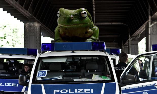 Frösche und Kröten als Polizeisirene