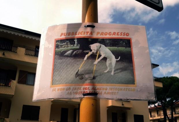 Hunde machen ihre Scheisse selbst weg. Hundehaufen ade.