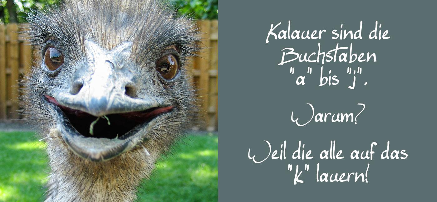 """Kalauer sind die Buchstaben A bis J."""" – """"?"""" – """"Weil die alle auf das K lauern! emu lacht über kalauer witz flachwitz"""