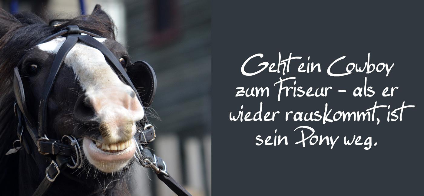 Geht ein Cowboy zum Friseur – als er wieder rauskommt, ist sein Pony weg. pferd lacht über cowboy witz flachwitze kalauer