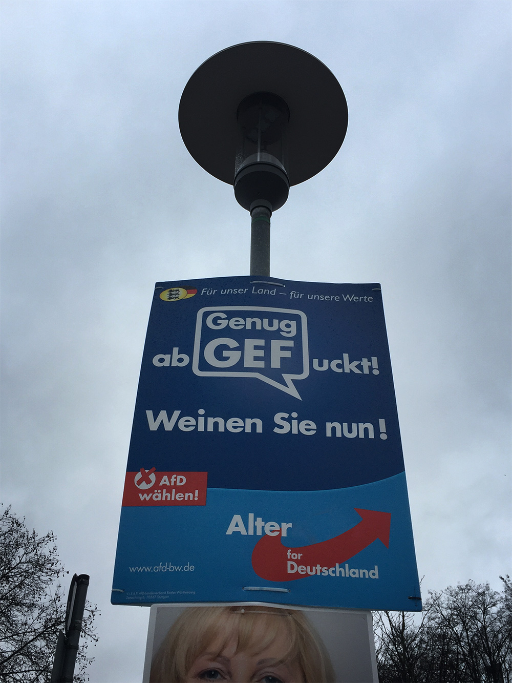afd genug abgefuckt genug abgezockt wahlplakat landtagswahl baden-württemberg 2016