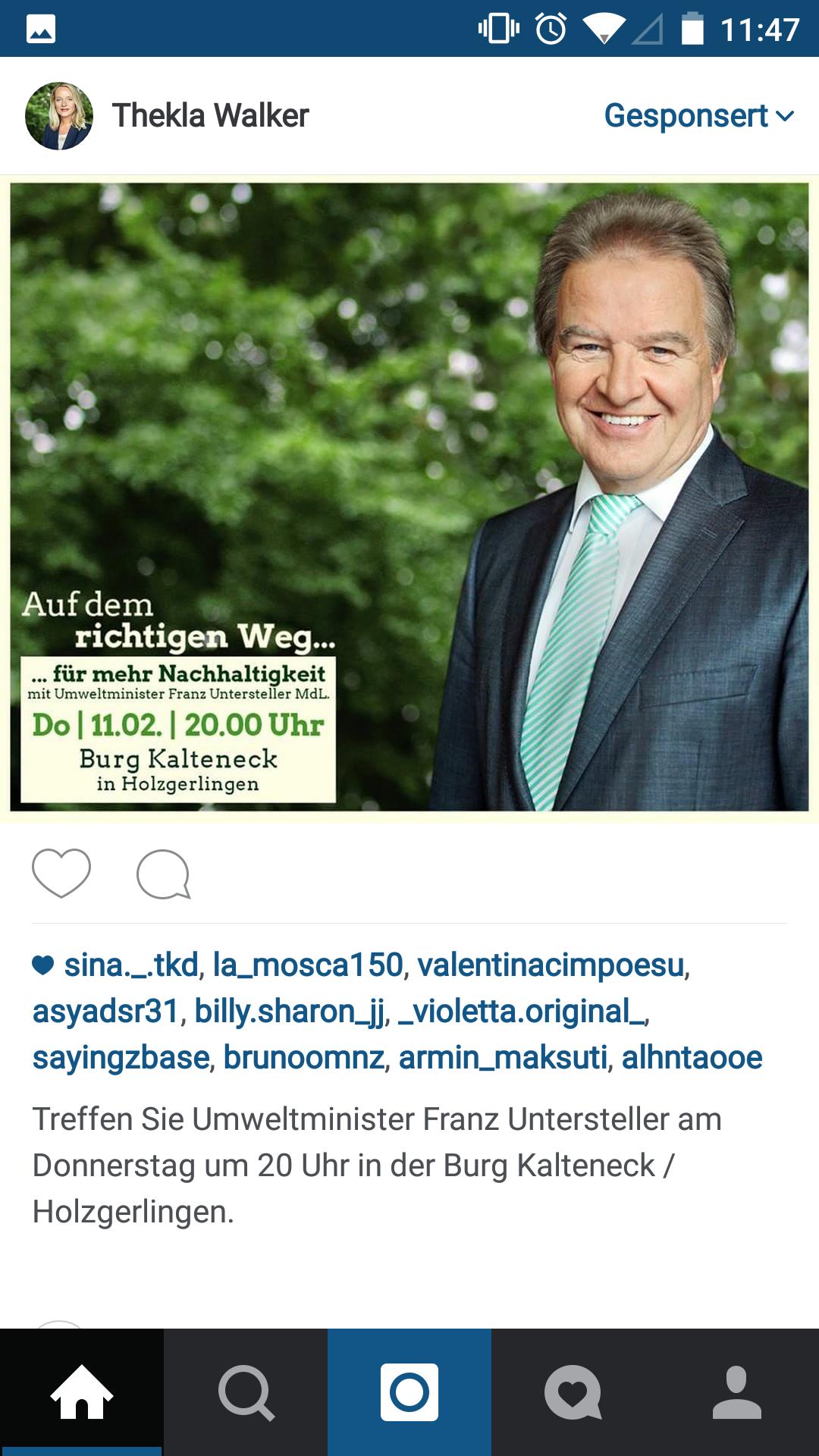 instagram werbung ads franz untersteller die gruenen